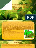 Métodos de Cuantificación de Las Plantas