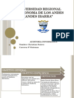 02 Informe Audit Inform