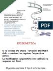 6 epigenetica