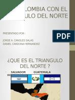 Tlc Triangulo Del Norte