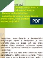 Copy of Korovi Predavanje 3.