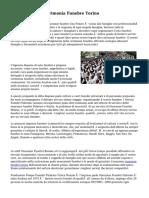 Organizzazione Cerimonia Funebre Torino