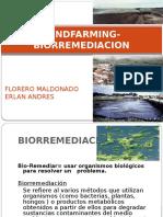 Landfarming Biorremediacion Final