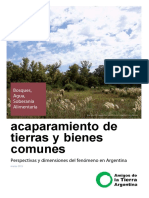 Acaparamiento de tierras y bienes comunes. Perspectivas y dimensiones del fenómeno en Argentina (3).pdf