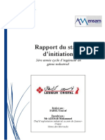 Rapport Stage d'Initiation LESIEUR