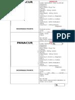 PANACRURRR CERDO.docx