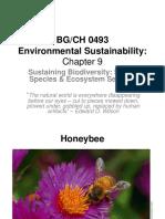 Sustaining biodiversity and ecosystem