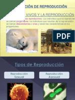 Los seres vivos y la reproducción