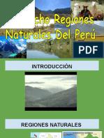 Regiones Naturales Del Perú !