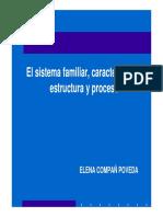 sistema familiar y caracteristicas, estructura y proceso.