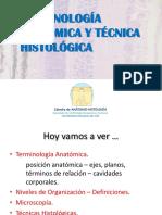 M1-C1- Nomenclatura y Técnicas