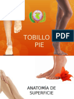 Diapositivas Pie