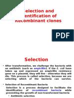Immuno Diffusion