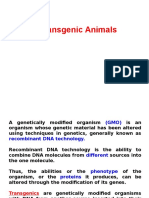 Lecture on transgenic animals.ppt