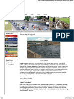 Jenis-Jenis Irigasi.pdf