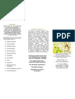 Holistic Brochure