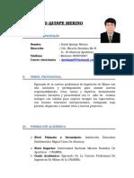 c.v. David Quispe Merino
