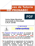 Directiva de Tutoría Del PRONABEC.