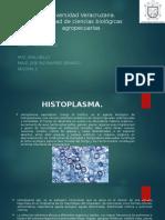Universidad Veracruzana HISTOPLASMA