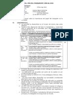 Plan Del Día Del Trabajador -Sjl 2016 (Plana)