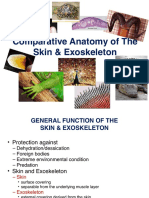 Lec2B Skin and Exoskeleton Summer2014
