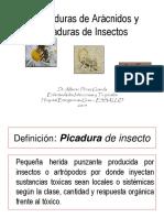 9- Mordeduras y Picaduras Exposicion