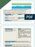 PLANEACION DOCENTE BUENA 14-15.docx