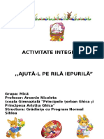 Proiect Activitate Integrata