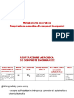 LEZIONE 16 - Metabolismo Microbico_chemiolitotrofi