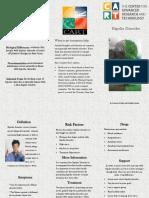 bipolar disorder pamphlet
