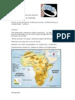 Trabalho Africa