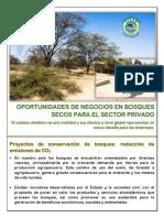 Oportunidades Bosques Secos Sector Privado Ok