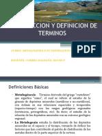 introduccion y definicion de terminos en metalogenia