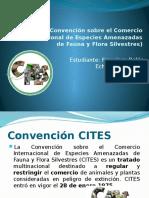 CITES PPT