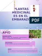Exposicion Plantas Ginecologicas y Obstetricas