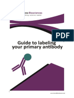 Guide to Labeling Your Primary Antibody FINAL