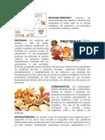 Carbohidratos, Lipidos Proteines Vitaminas Sales Minerales Micronutrientes.