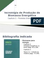 Capitulo 2 - Florestas Energeticas