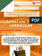 Programacion y Gestión Curricular