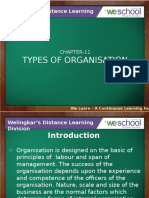 11 Types of organization