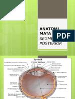 Anatomi Mata Segmen Posterior