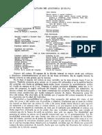 Tratado de Anatomia Humana Quiroz Tomo I_100
