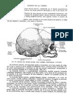 Tratado de anatomia humana Quiroz tomo I_105.pdf