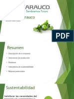 Celulosa Arauco indice de sustentabilidad