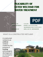 Presetntation About Construction Wetlanddsl