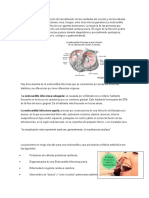 endocarditis.docx