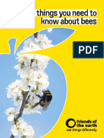 20 Things You Need Know About Bees Booklet