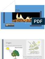 TLYA Biomasa-Generalidades
