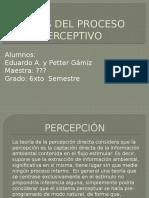 Fases Del Proceso Perceptivo