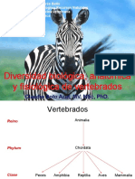 3 Diversidad Biovdfvdvl%2c Anat y Fisiol Vertebrados